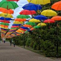 Осень,... зонты прилетели... :: Александр Облещенко