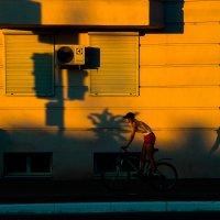 Велосипедист :: Артемий Кошелев