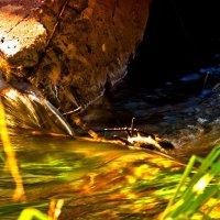 Вниз воды катит быстрая река... :: Inessa Shabalina