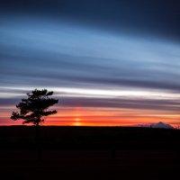 Вечерние краски :: Дмитрий Сотников