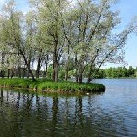 Островок в Екатерининском парке :: Наталья