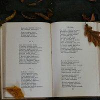Книга и жёлтые лесточки :: Света Кондрашова