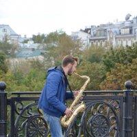 Саксофонист. :: Oleg4618 Шутченко