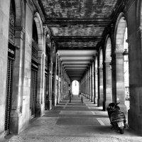 Тоннель Барселоны :: Сергей Коршунов