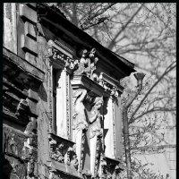 Дом с кариатидами :: Наталья Rosenwasser