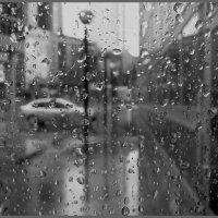 Дождливый день :: Наталья Rosenwasser
