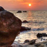 Stone turtle :: Yury Barsukoff
