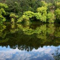 Вода как зеркало... :: Ksjy Kotovenko