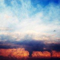 царство небесное :: Валерий Теняков