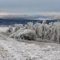 Зимний монохром :: Виктор Климов