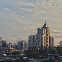 Петербург :: Елена Панькина