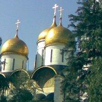 Москва :: Kameliia Хадлер