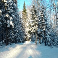 зима :: дарья новоселова