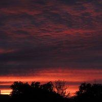 Небо во время заката... :: Татьяна Наркевич