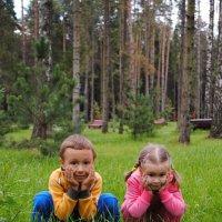 грибочки выросли! :: petrovpetrg