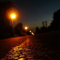 Ночная дорога :: Вадим Шинкарь