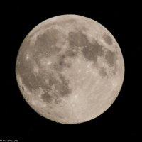 Луна :: rocknrolik