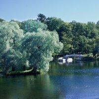 Белое озеро :: Максим Гуревич