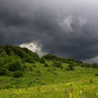 Начало бури :: Беспечный Ездок