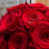 Розы и кольца :: Юлия Уткина