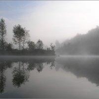 Плывущие в тумане :: Игорь Шербаков