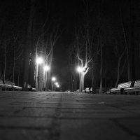 Мариинский парк (Киев) :: Andrey Sikan