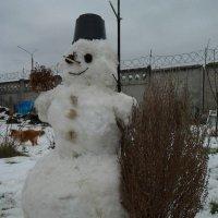 Снеговик :: Дмитрий Никифоров