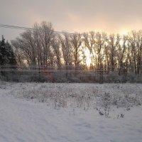 Зимний рассвет :: Дмитрий Никифоров