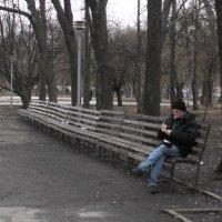 Присаживайтесь, пожалуйста - места хватит! :: Наталья Тимошенко