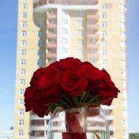 Цветы на окне :: Юлия Уткина