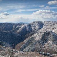 Зимы седеющие пряди :: Nataliya Barinova