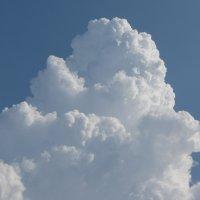 Пирожное облако :: Mila Kulikova