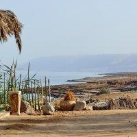 Мёртвое море. :: Павел Сущёнок