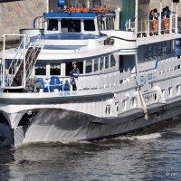 речной извозчик :: Олег Лукьянов