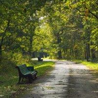 Парк в сентябре :: Виталий
