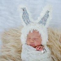 Новорожденные модели в возрасте до 14 дней. :: Люба Забелкина