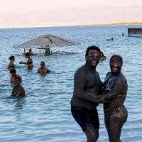 Живая сила Мертвого моря :: Александр Липовецкий