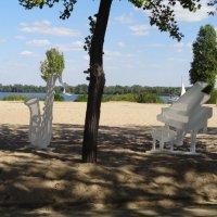 Рояль в кустах возле Днепра :: Алекс Аро Аро