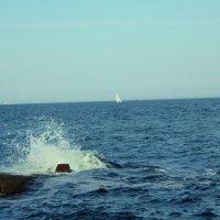 Море :: Таня