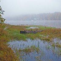 Утро туманное :: Анатолий Иргл