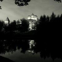 .. Черно-белый этюд .. :: Арина Невская
