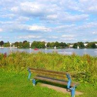 На озере Альстер (серия) Скамеечка у озера :: Nina Yudicheva