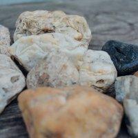 Камни :: Света Кондрашова