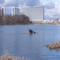 Озеро в Столице :: Александр Колесников