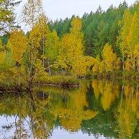 Осень. :: Анатолий Круглов