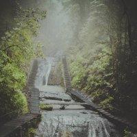 Водопады :: Вероника