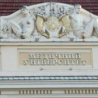 архітектурний домінант :: Степан Карачко