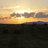 закат на поле :: Alexandr Staroverov