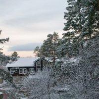 Первый снег :: Юрий Борзов