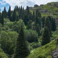Джунгарский Алатау, Казахстан :: Val Савин